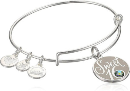 This is an image of Alex and Ani's Expandable Silver Bangle